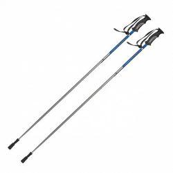 Купить Палки для скандинавской ходьбы односекционные TS-102 Тривес